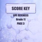 Life Science Gr11 KEY 3 (SA)