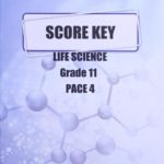 Life Science Gr11 KEY 4 (SA)