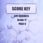 Life Science Gr11 KEY 6 (SA)