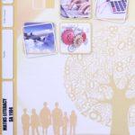 Math Literacy SA PACE 1104