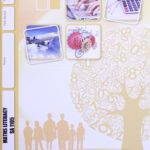 Math Literacy SA PACE 1105