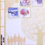 Math Literacy SA PACE 1106