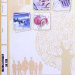 Math Literacy SA PACE 1110