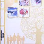 Math Literacy SA PACE 1123