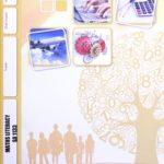 Math Literacy SA PACE 1133