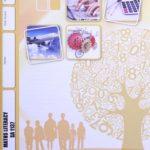 Math Literacy SA PACE 1137