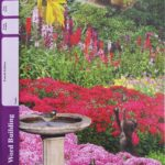 Word Building PACE 1034 (4th ed)