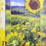 Maths PACE 1073 (4th ed)