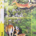 Maths PACE 1074 (4th ed)