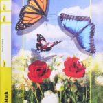 Maths PACE 1077 (4th ed)