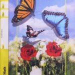 Maths PACE 1091 (4th ed)