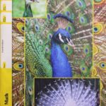 Maths PACE 1095 (4th ed)