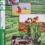 Social Studies PACE 1033 (4th ed)