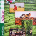 Social Studies KEY 1005 (4th ed)