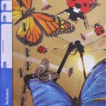 Science PACE 1029 (4th ed)