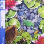Earth Science PACE 1090 (4th ed)