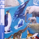 Earth Science PACE 1091 (4th ed)