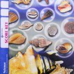 Science KEY 1006 (4th ed)