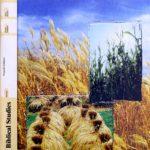 Biblical Studies- New Testament  PACE 100 (4th ed)