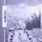 Biblical Studies-New Testament KEY100-102 (4th ed)