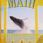 Maths PACE 1062