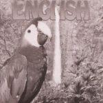 English KEY 1058-1060