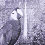 English KEY 1079-1081