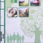 Social Studies SA PACE 1023 (11/17)