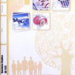 Business Studies SA PACE 1123 (05/17)