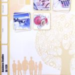 Business Studies SA PACE 1126 (06/17)