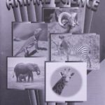 Animal Science KEY 1013 - 1015