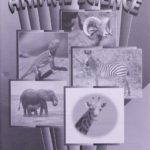 Animal Science KEY 1019 - 1021